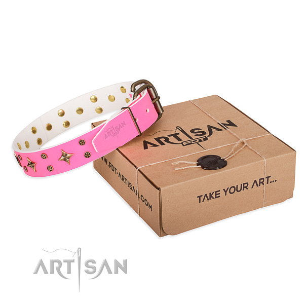 Stylish walking dog collar of high quality full grain natural leather with decorations