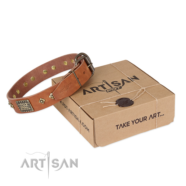 Comfortable genuine leather collar for your impressive canine