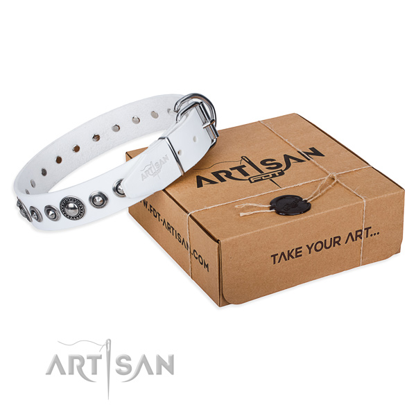 Full grain natural leather dog collar made of high quality material with strong traditional buckle