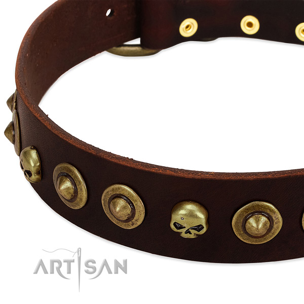 Unusual decorations on genuine leather collar for your dog
