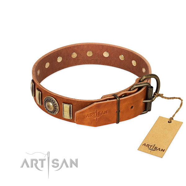 Perfect fit full grain leather dog collar with rust resistant fittings