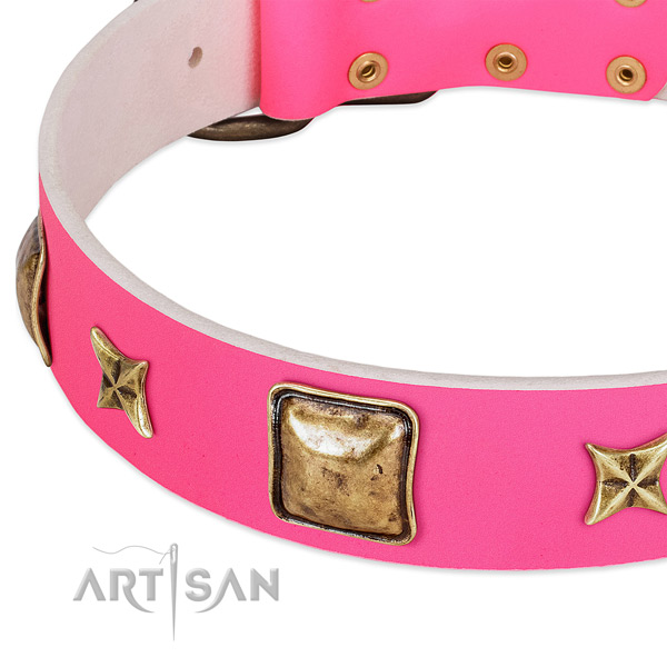 Natural leather dog collar with impressive embellishments