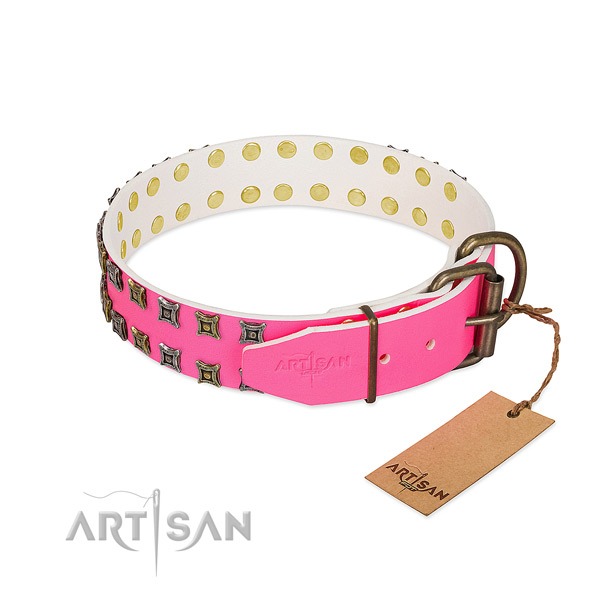 Full grain leather collar with unusual adornments for your pet