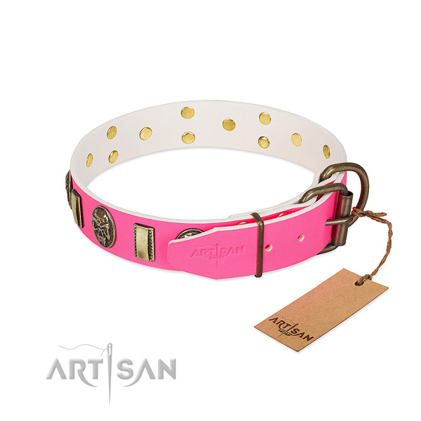 Corrosion proof studs on full grain genuine leather dog collar for your four-legged friend