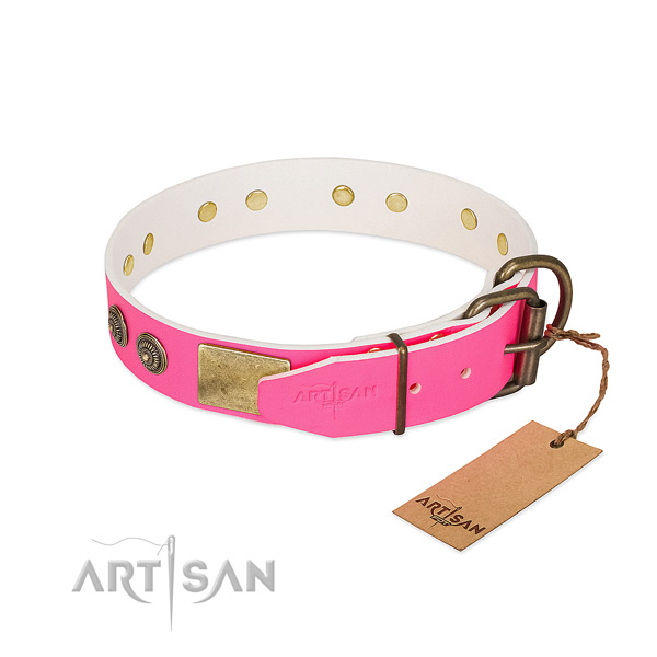 Rust resistant D-ring on full grain natural leather collar for walking your canine