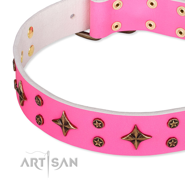 Stylish walking decorated dog collar of finest quality full grain leather