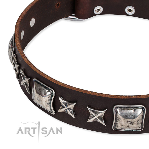 Easy wearing studded dog collar of top quality full grain leather