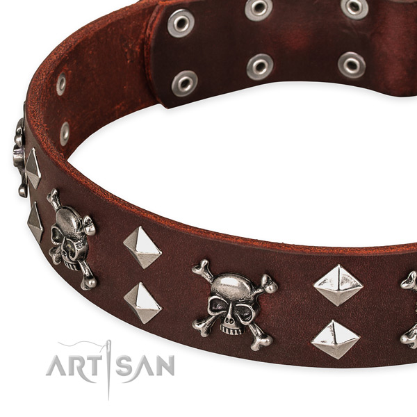 Everyday walking studded dog collar of finest quality full grain leather