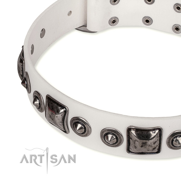 High quality leather dog collar created for your lovely pet