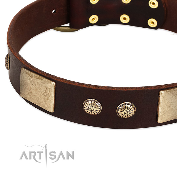 Rust resistant traditional buckle on full grain leather dog collar for your canine