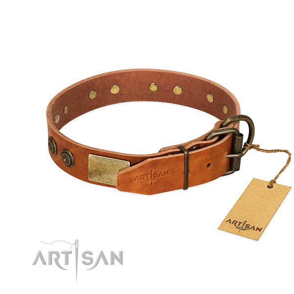 Reliable hardware on full grain genuine leather collar for walking your canine