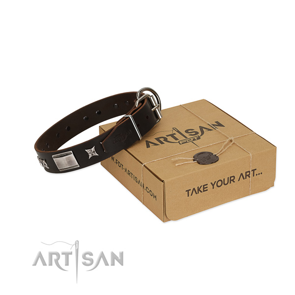 Inimitable collar of genuine leather for your impressive four-legged friend