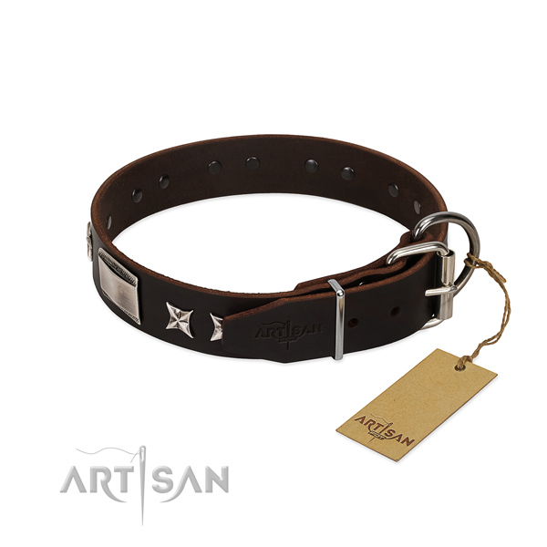Exquisite collar of leather for your handsome pet