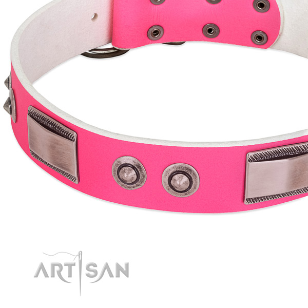 Remarkable leather collar with decorations for your dog