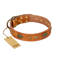 """Sun Beams"" FDT Artisan Tan Leather Amstaff Collar with Decorations"