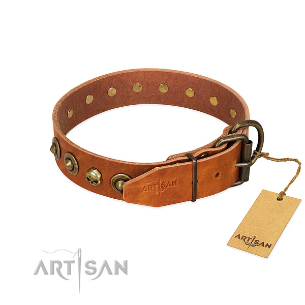 Leather collar with stunning adornments for your dog