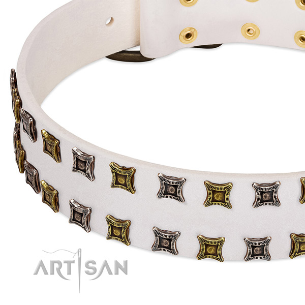 Leather dog collar with adornments for your impressive pet