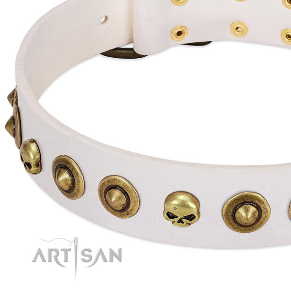 Awesome adornments on leather collar for your four-legged friend