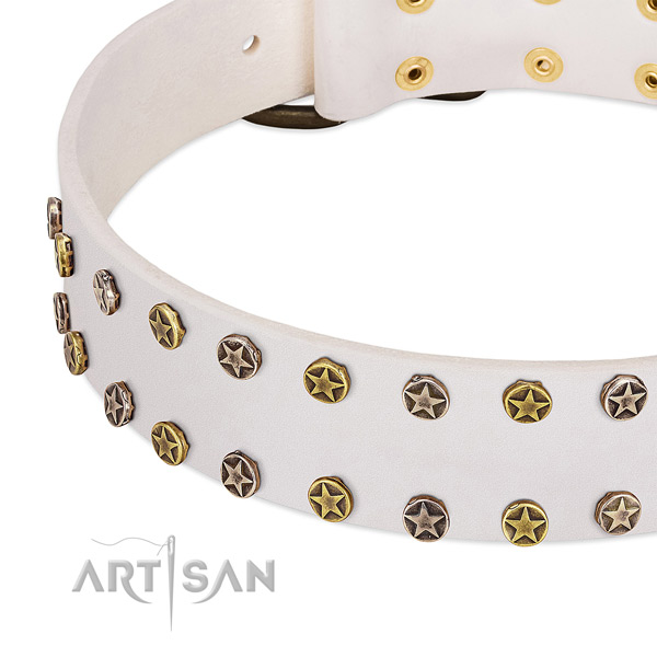 Designer embellishments on leather collar for your doggie