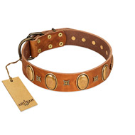 """Glossy Autumn"" Designer Handmade FDT Artisan Tan Leather Amstaff Collar with Ovals and Studs"