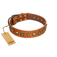 """Prez of the Pack"" FDT Artisan Tan Leather Amstaff Collar with Skulls and Brooches"