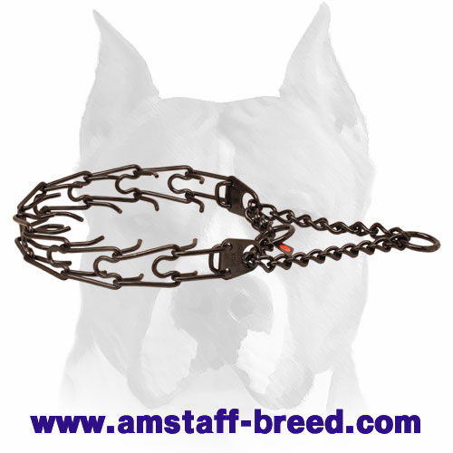 Pinch collar of rust-proof black stainless steel for badly behaved pets