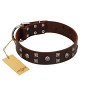 """Brown Shadow"" Designer Handmade FDT Artisan Brown Leather Amstaff Collar"