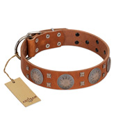 """Sun Rise Noon"" FDT Artisan Tan Leather Amstaff Collar with Unique Design"