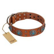"""Blue Sands"" FDT Artisan Tan Leather Amstaff Collar with Silver-like Studs and Round Conchos with Stones"