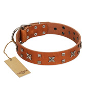 """Faraway Galaxy"" FDT Artisan Tan Leather Amstaff Collar Adorned with Stars and Squares"