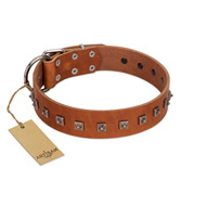"""Guard of Honour "" Designer FDT Artisan Tan Leather Amstaff Collar with Small Dotted Pyramids"