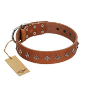 """Broadway"" Handmade FDT Artisan Tan Leather Amstaff Collar with Dotted Pyramids"