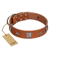 """Lucky Star"" FDT Artisan Tan Leather Amstaff Collar with Silver-Like Embellishments"