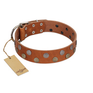 """Ancient Symbol"" Trendy FDT Artisan Tan Leather Amstaff Collar with Silver- and Gold-Like Studs"