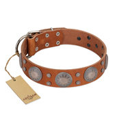 """Far Star"" FDT Artisan Tan Leather Amstaff Collar with Engraved Studs"
