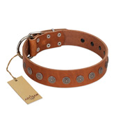 """Lucky Star"" Handmade FDT Artisan Designer Tan Leather Amstaff Collar with Round Plates"