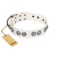 """Eye Candy"" Appealing FDT Artisan White Leather Amstaff Collar with Chrome Plated Medallions"