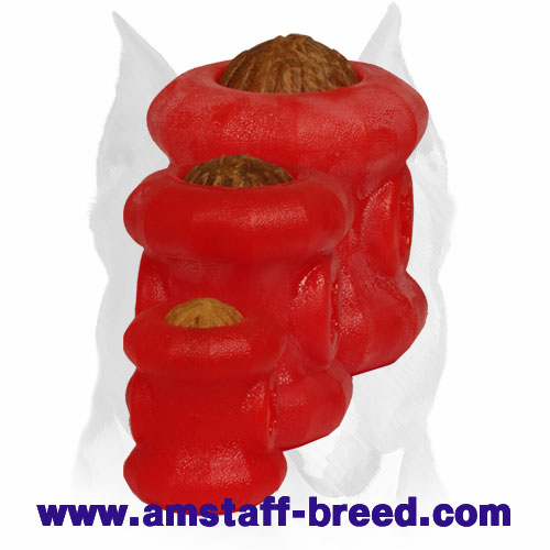 Colorful Rubber Toy for Amstaff