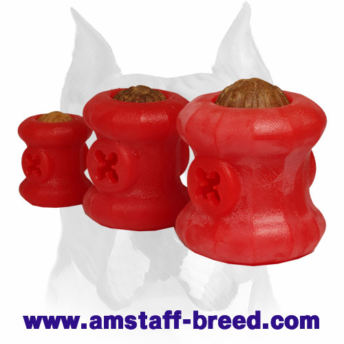 Bright Training Rubber Toy for Amstaff