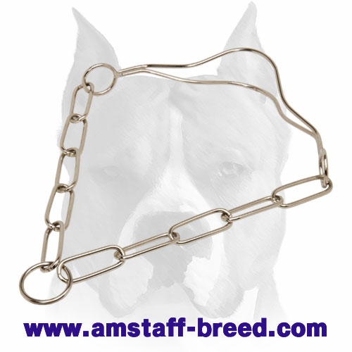 Reliable Dog Collar for Amstaff