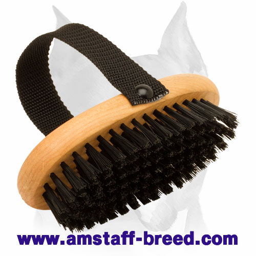 Wooden Bristle Brush for Amstaff