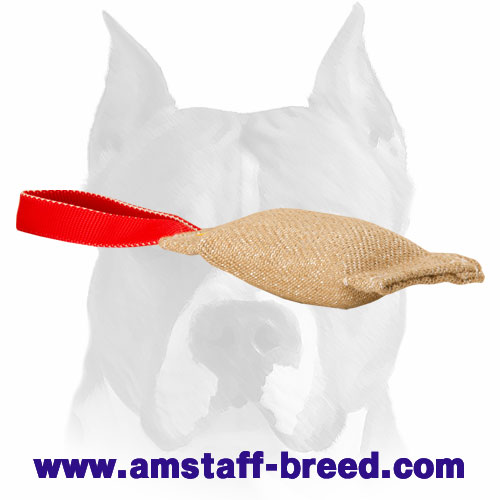 Amstaff Jute puppy tug for bite training