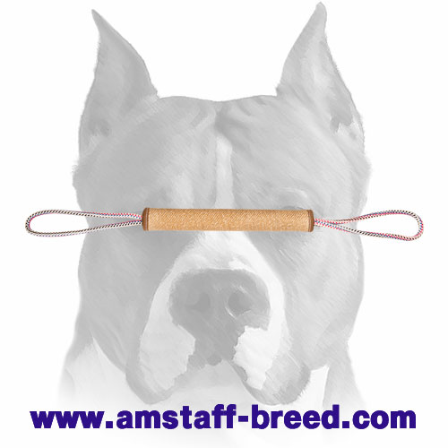 Strong rolled Jute bite tug for training Amstaff breed