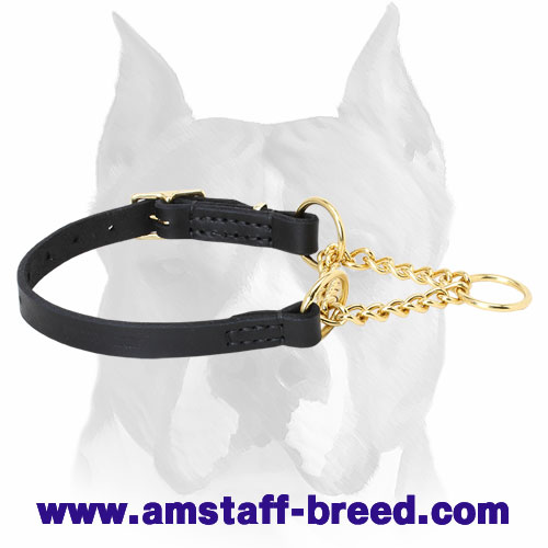 Amstaff Collar Made of Leather and Brass