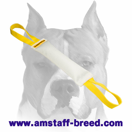 Sturdy bite tug with nylon handles for Amstaff training and playing