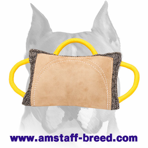 Strong bite pad with leather surface for training Amstaff breed