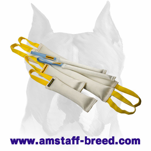 Doubled set of bite tugs with handles for training Amstaff