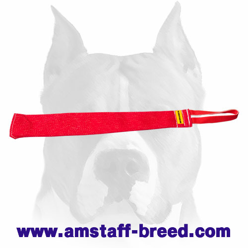 Strong puppy bite rag for Amstaff prey drive and retrieve training