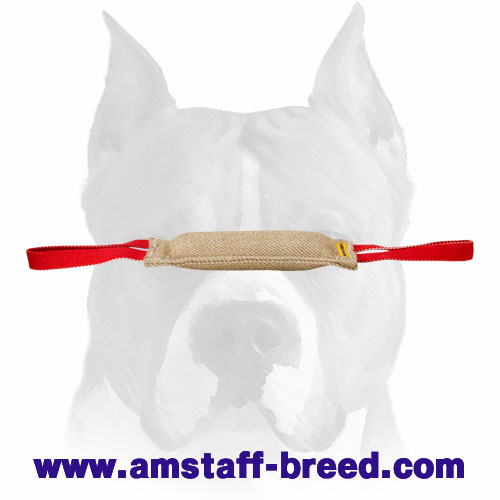 Amstaff puppy tug for bite skills developing made of Jute
