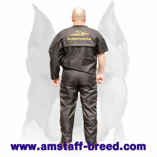 Strong dog scratch protection suit for Amstaff training